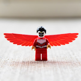 by Lisa Frisby - Novices Only Objects & Still Life ( super hero, toy, toys, lego )