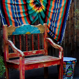 Southwest Flare by Shawn Thomas - Artistic Objects Furniture ( red, rug, corner, park, bench,  )