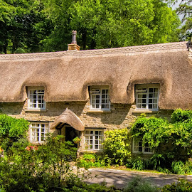 Houses, Buckland-in-the-Moor, Dartmoor. by Graeme Hunter - Buildings & Architecture Homes
