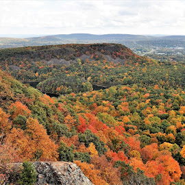 Autumn by Janice Burnett - Landscapes Mountains & Hills ( red, orange, fall colors, green, fall, outdoors, nature, autumn )
