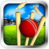 Cricket Run Out 3D APK baixar