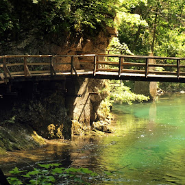 green walk by Francisco Cardoso - Landscapes Waterscapes ( water, slovenia, trek, river )