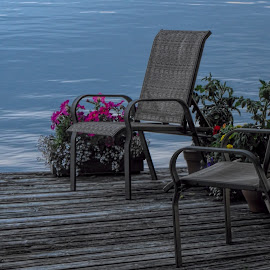 Dockside Tranquility by Harold Bradley - Artistic Objects Furniture ( water, potted, plants, lake, relaxation, scenic, dock, deckchairs, freshwater, scenic view, rest, deck, flowers )