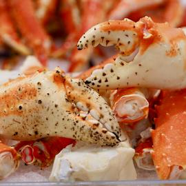 King Crab Claws by Dave Feldkamp - Animals Sea Creatures ( king crab, crab claw, king crab claws, claws, crab,  )