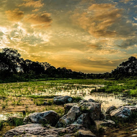 Beautiful Sunset  by Herman Olivier - Landscapes Sunsets & Sunrises ( clouds, hdr, sunset, landscape, panorama, panoramic )