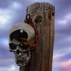 Skull on Post by Teresa Delcambre - Artistic Objects Still Life ( skull, fence, sky, post, chain, bones, sunset, rust )