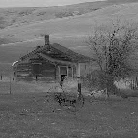 Abandoned Farm  by James Oviatt - Black & White Buildings & Architecture