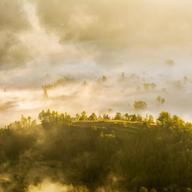 Misty by Serhan Tekin - Landscapes Cloud Formations ( clouds, mount, batur, summit, formation )
