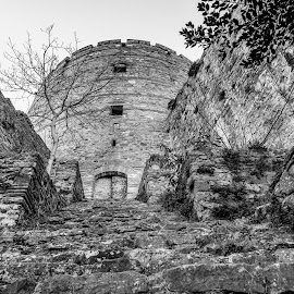 Rumeli Hisar by Bogdan Rusu - Black & White Buildings & Architecture ( stairs, black and white, fortress, citadel, moody )