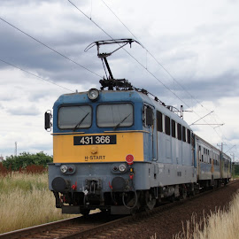 431-366 by Nagy Attila - Transportation Trains ( 431 )