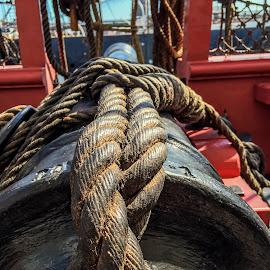 Ships Canon by Eytan Yammer - Transportation Boats ( ships, historical, ropes, sailboat, cannon )