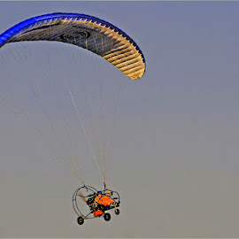 paraglider by Leon Pelser - Transportation Other ( no flash, f8, monopod, iso 100, 1/500,  )