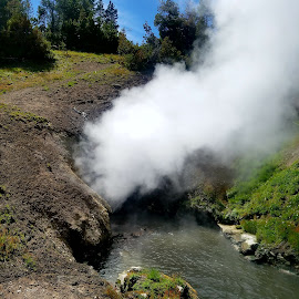 The dragon's breathe cauldron at Yellowstone  by LaDonna McCray - Nature Up Close Other Natural Objects ( volcano, smoking, calderon, yellowstone national park, underground, smoke )