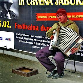 Accordionist by Renato Dibelčar - People Musicians & Entertainers ( music, life, slovenija, color, street, slowenien, slovenia, musician, maribor, live )