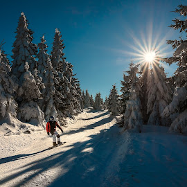 by Radek Winter - Sports & Fitness Snow Sports