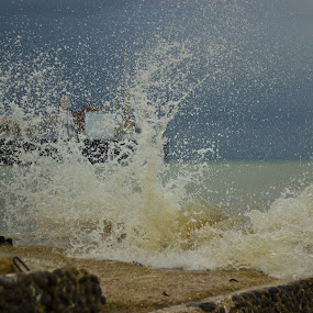 by Mark Niehe - Landscapes Beaches ( stormy, brighton, wave, beach, morning, crash )