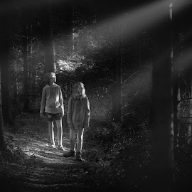 Light in the forest by Malcolm Hare - People Family