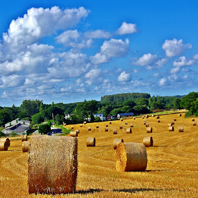 Football, countryside style I by Ciprian Apetrei - Landscapes Prairies, Meadows & Fields ( hay, summer, brittany, landscape, prairie )