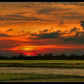 Dawn or Dusk... by Sannit Hazra - Landscapes Prairies, Meadows & Fields