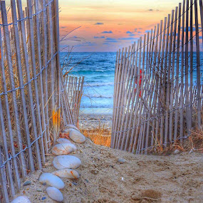 Walkway to heaven  by Ann Goldman - Novices Only Landscapes ( walkway beach sunset shells fence ocean )