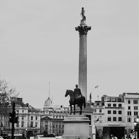 A view from Trafalgar Square, London by Arindam Bera - Black & White Buildings & Architecture (  )