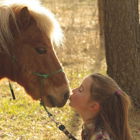 Gentle by Giselle Pierce - Babies & Children Children Candids ( miniature horse, child, face, kiss, little girl, friends, girl, mane, horse, close up, nose, kid )