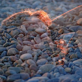 by Simona Serdiuc - Digital Art People ( portraiture, double exposure, pebbles, beach, portrait, man )