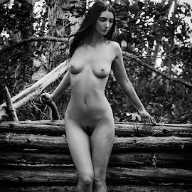 Log Fence by James Baker - Nudes & Boudoir Artistic Nude ( farm, model, nude, barn, kallia, 825555, forest )