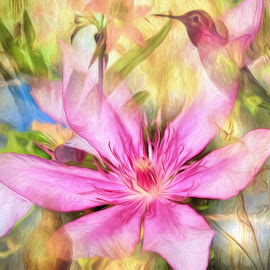 Clematis In The Garden by Mill Tal - Digital Art Things