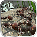 Free Download Ant Simulator 3D APK for Samsung