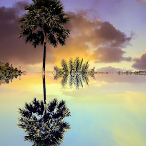 ANAHAW TREE SUNSET REFLECTION by Mary Day-asen Ngoap - Landscapes Mountains & Hills