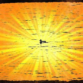 Walking on Sunshine by Julianne Marie - Digital Art Animals ( art, duck, effects, digital, sun )