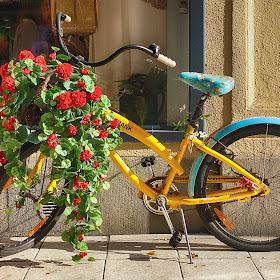 BikeDSC029723final.jpg