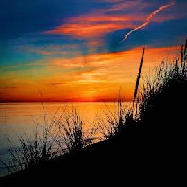 Blue night sky by Randall Cogle - Landscapes Sunsets & Sunrises