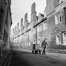 Cambridge by Mike Campbell - City,  Street & Park  Street Scenes ( street, cart, road, cambridge )