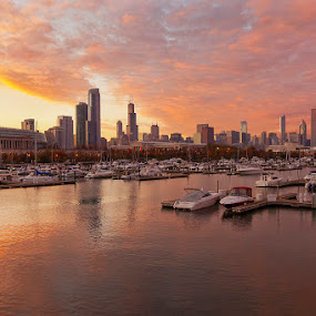 Fall Pink Chicago Sunset... by Jamie Link - City,  Street & Park  Skylines ( jamie link photography, jamie link, commercial outdoor photographer )
