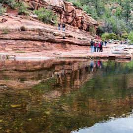 Oak Creek Canyon by Alison Graham - Landscapes Travel ( water, creek, canyon, rocks, hiking, river, arizona 2015 )