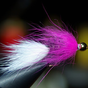 Bead-head Bunny Leach by Kirk Barnes - Artistic Objects Other Objects ( pink and white, fishing lure, macro photography, fly tying )