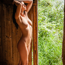 Looking Out by James Baker - Nudes & Boudoir Artistic Nude ( farm, model, nude, barn, kallia )