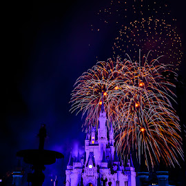 Disney Fireworks by Jeff McVoy - Abstract Fire & Fireworks ( sky, park, blast, bright, explosion, colors, magic kingdom, theme park, fireworks, night, castle, disney )