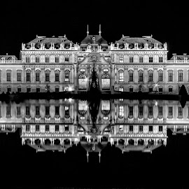 Belvedere by Christoph Reiter - Buildings & Architecture Public & Historical ( palace, castle, night, long exposure, mirroring, water )