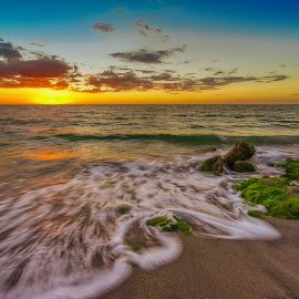 Kinetic Shoreline at Dusk by Bill Camarota - Landscapes Sunsets & Sunrises ( water, clouds, sand, eventide, becach, kinetic, dusk, sun, forida, sunset, seaweed, movement, shoreline, sundown, rocks )
