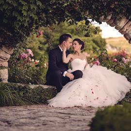 by Iulian Besliu - Wedding Bride & Groom ( fotograf profesionist )