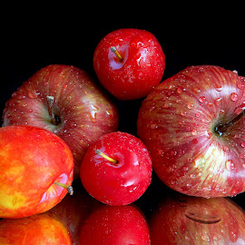 Family of Red by Asif Bora - Food & Drink Fruits & Vegetables (  )