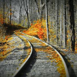 Around The Bend by Brant Stevenson - Transportation Railway Tracks