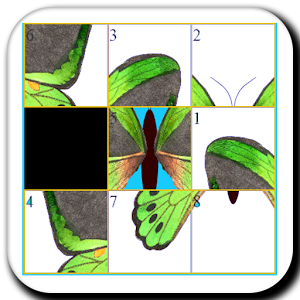 Real Butterfly Slide Puzzle