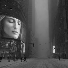 Blizzard in Times Square by VAM Photography - City,  Street & Park  Neighborhoods ( winter, times square, snow, nyc, blizzard,  )