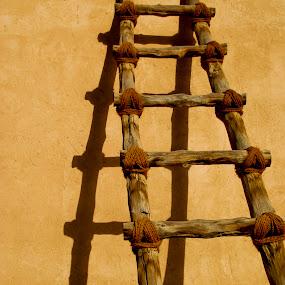 Ladder. UAE 2013 by João Ferreira - Artistic Objects Antiques ( al ain abu dhabi ladder )