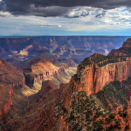 Canyon Land by Peter Kennett - Landscapes Deserts ( desert, cape royal, sunset, arizona, north rim, landscape, rain, grand canyon )