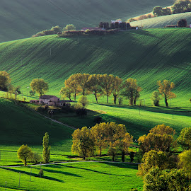 Green Hills by Emanuele Zallocco - Landscapes Mountains & Hills ( hills, green )